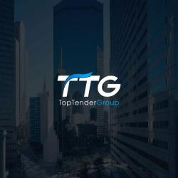 TopTenderGroup франшиза